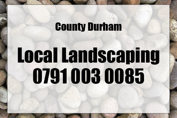 Local Landscaping